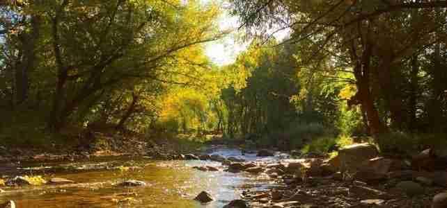 riverview2_1