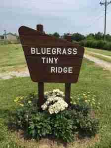 bluegrass_tiny_ridge